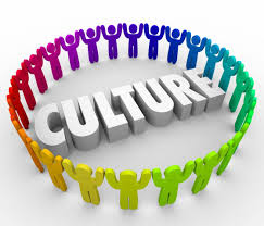 difference between organisational culture and climate pdf